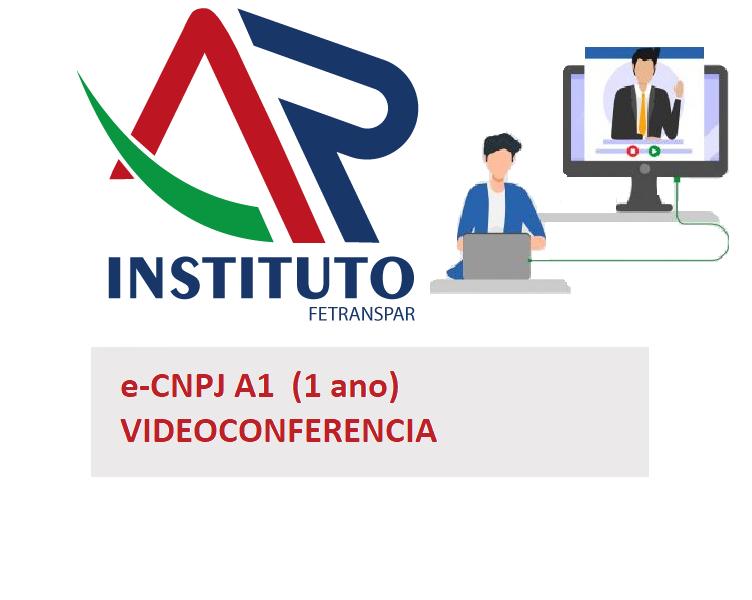 VIDEOCONFERENCIA - ECNPJ A1